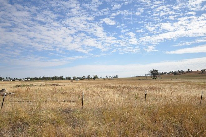 Picture of 2 Alcheringa Drive, FORBES NSW 2871