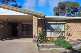 Picture of 2/54 Eltham Avenue, Port Lincoln SA 5606