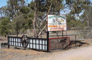 Picture of 'Yanco Pets And Ponies', Leeton NSW 2705