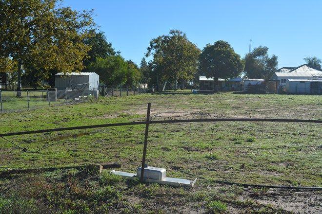 Picture of 1 Petunia Street, BLACKALL QLD 4472