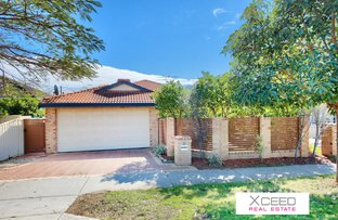 Picture of 36A Beatrice Street, Doubleview WA 6018