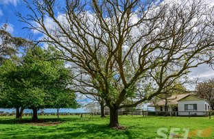 Picture of 365 Rougheads Road, Leongatha South VIC 3953