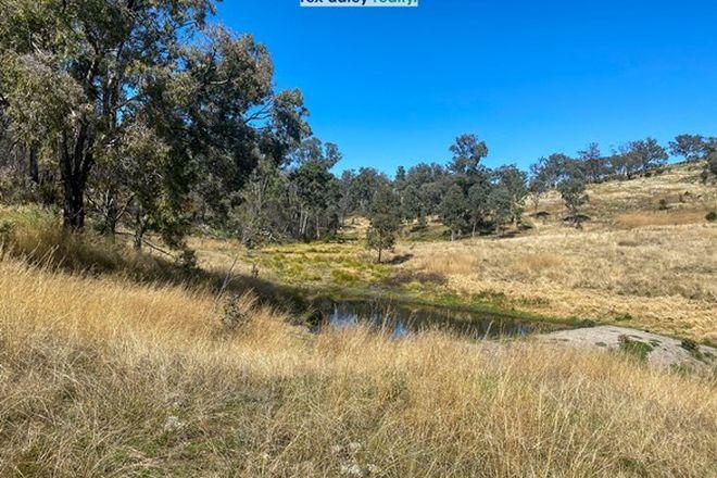 Picture of 229 Bundarra Road, BARRABA NSW 2347