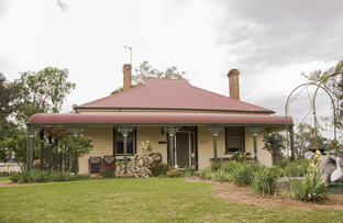 Picture of 134 Hill Street, Molong NSW 2866