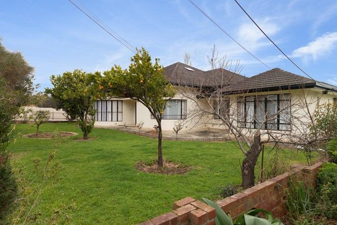 2, 5+ Bedroom Free Standing Houses for Rent in Magill, SA