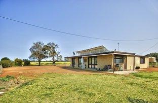 408 Marshalls Rd, Deniliquin NSW 2710