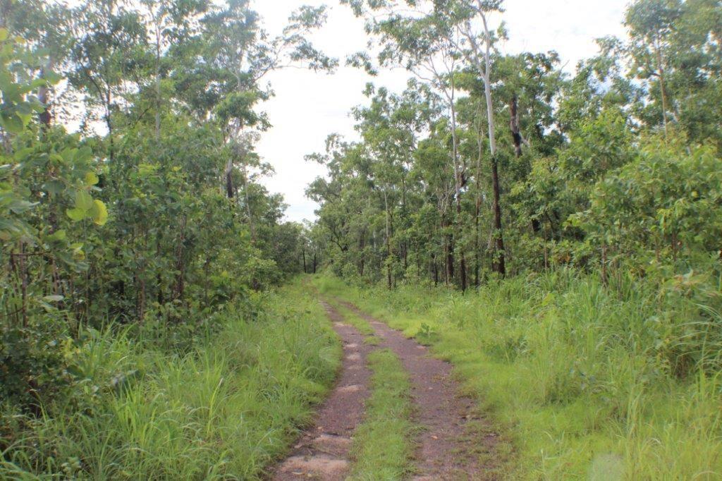 117 Eucalyptus Road, Herbert NT 0836, Image 1