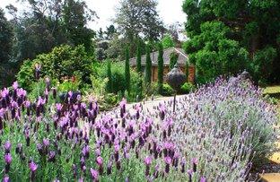 Picture of 21 Sams Way, Bilpin NSW 2758