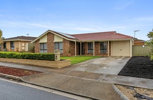 Picture of 23 Lyons Circuit, Trott Park SA 5158