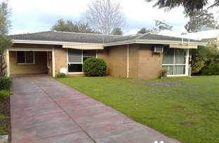 Picture of 47A St Michael Terrace, Mount Pleasant WA 6153
