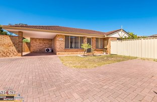 Picture of 6/30 Westfield Street, Maddington WA 6109