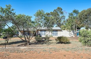 Picture of 22-24 Bruce Street South, Coolamon NSW 2701