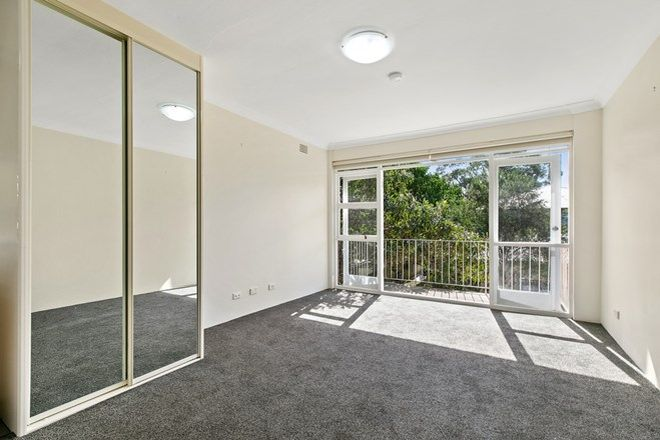 Picture of 6/13 Grafton Crescent, DEE WHY NSW 2099