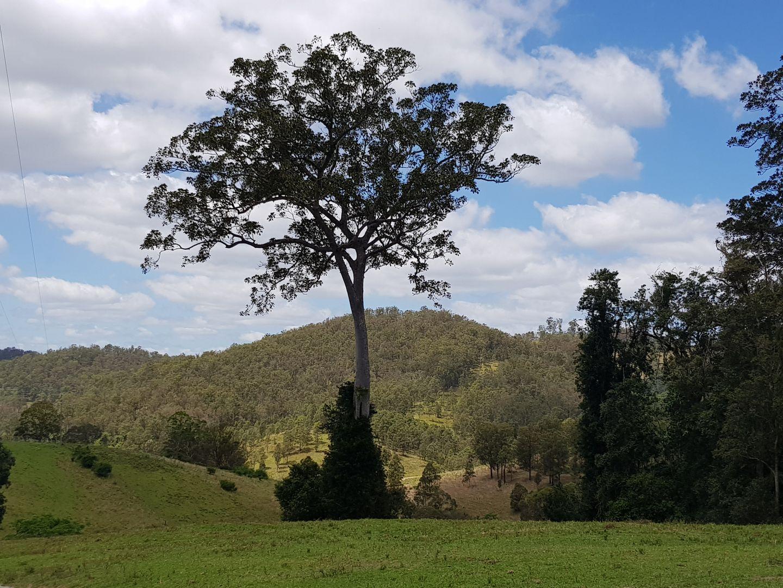 359 Tilbaroo Crossing Road, Toms Creek NSW 2446, Image 2