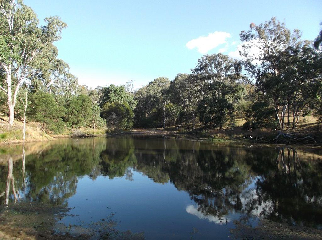 Lot 37 Mount Lindesay Road, Liston NSW 2372, Image 0