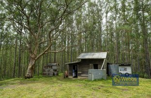 Picture of 174 Afflecks Road, Gloucester NSW 2422