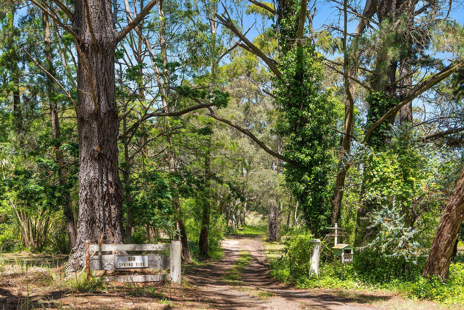 170 Colo Road, Colo Vale NSW 2575, Image 0
