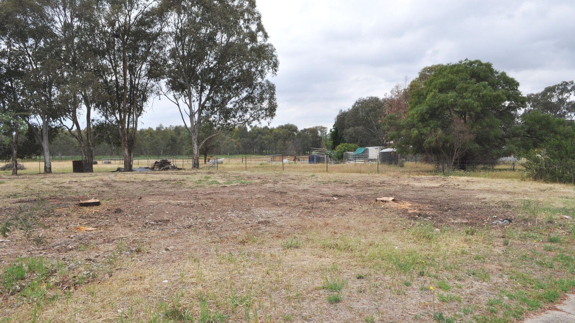 Lot 67 Pinkstone Avenue, Cootamundra NSW 2590, Image 1