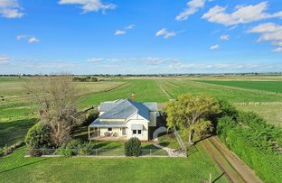 Picture of 295 Larpent Road, Cororooke VIC 3254