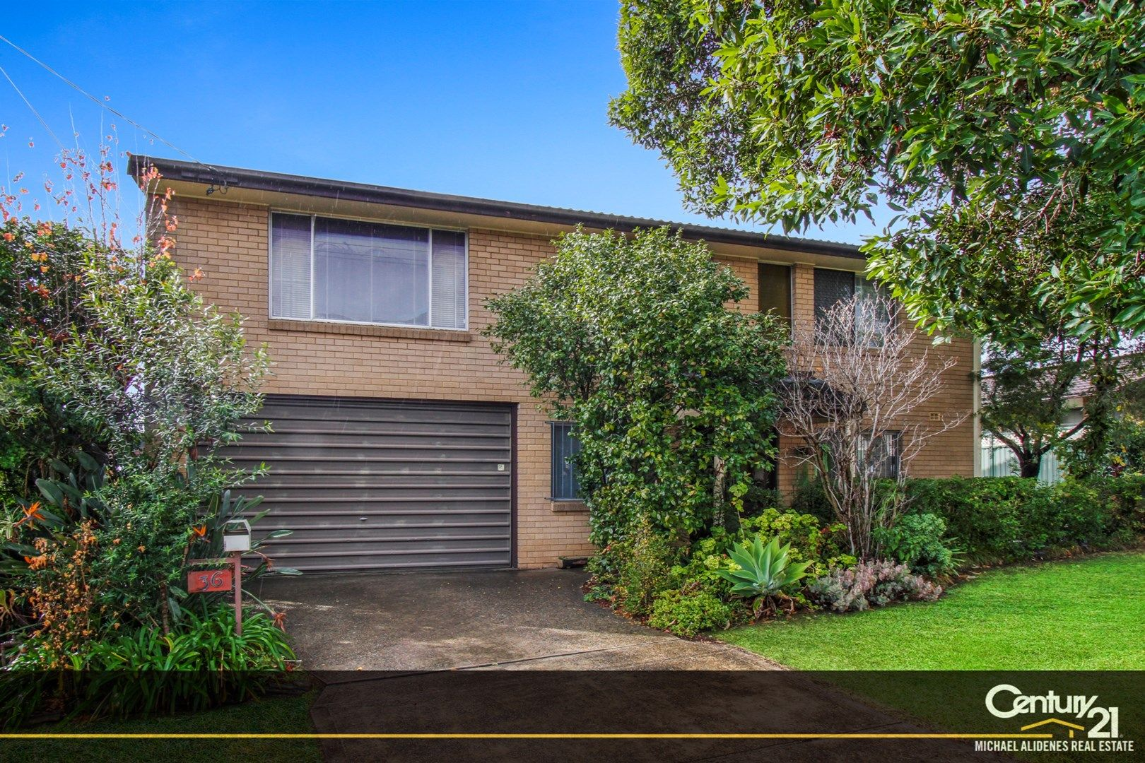 36 Mountview Avenue, Beverly Hills NSW 2209, Image 0