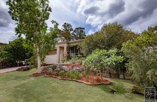 Picture of 59 Corymbia   Crescent, Anstead QLD 4070