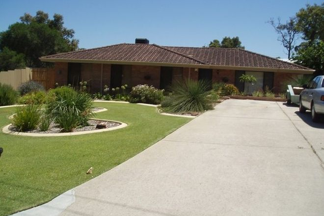 Picture of 3 Moennich Court, COOLBELLUP WA 6163