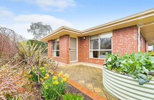Picture of 18 Elm Court, Nairne SA 5252