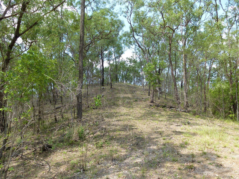Lot 43 Mossman Road, Miriam Vale QLD 4677, Image 2