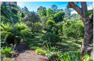 186 Repentance Creek Road,   Federal-Goonengerry, Mullumbimby NSW 2482