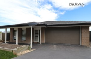 Picture of 17 Royalty Street, West Wallsend NSW 2286