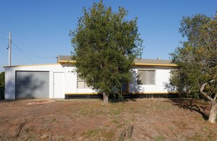 Picture of 98 Cassia Road, Leeton NSW 2705