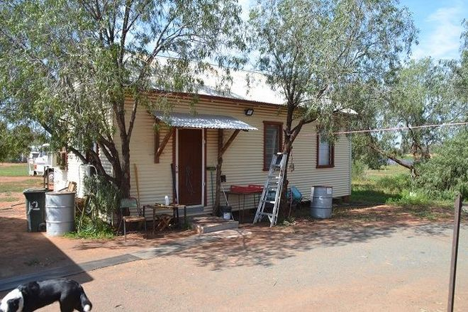 Picture of * The Woolshed, HERMIDALE NSW 2831