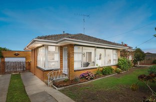 Picture of 317 High Street, Belmont VIC 3216