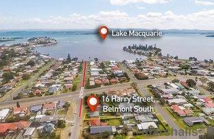 16 Harry Street, Belmont South NSW 2280