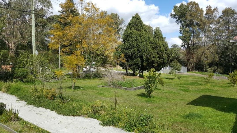 3 Myoora Road, Terrey Hills NSW 2084, Image 2