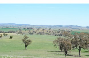 Picture of 2472 Banjo Paterson Way, Cumnock NSW 2867