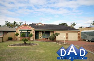 Picture of 11 Silvergull Terrace, Australind WA 6233