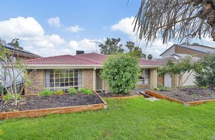 Picture of 18 Panorama Drive, Athelstone SA 5076