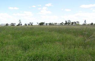 Picture of 2432 Goolhi Rd, Gunnedah NSW 2380