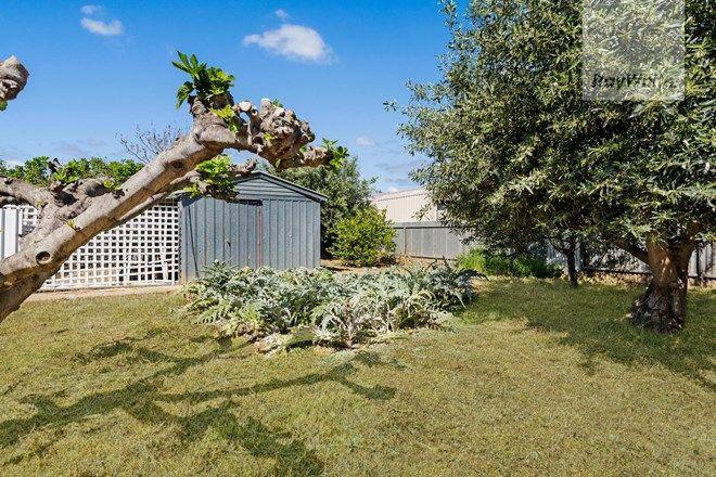Picture of 4 Arlington Terrace, WELLAND SA 5007