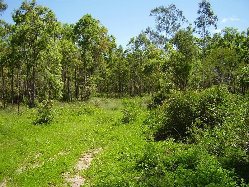 Berajondo QLD 4674, Image 0
