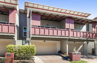 Picture of 33/28 Amazons Place, Jindalee QLD 4074