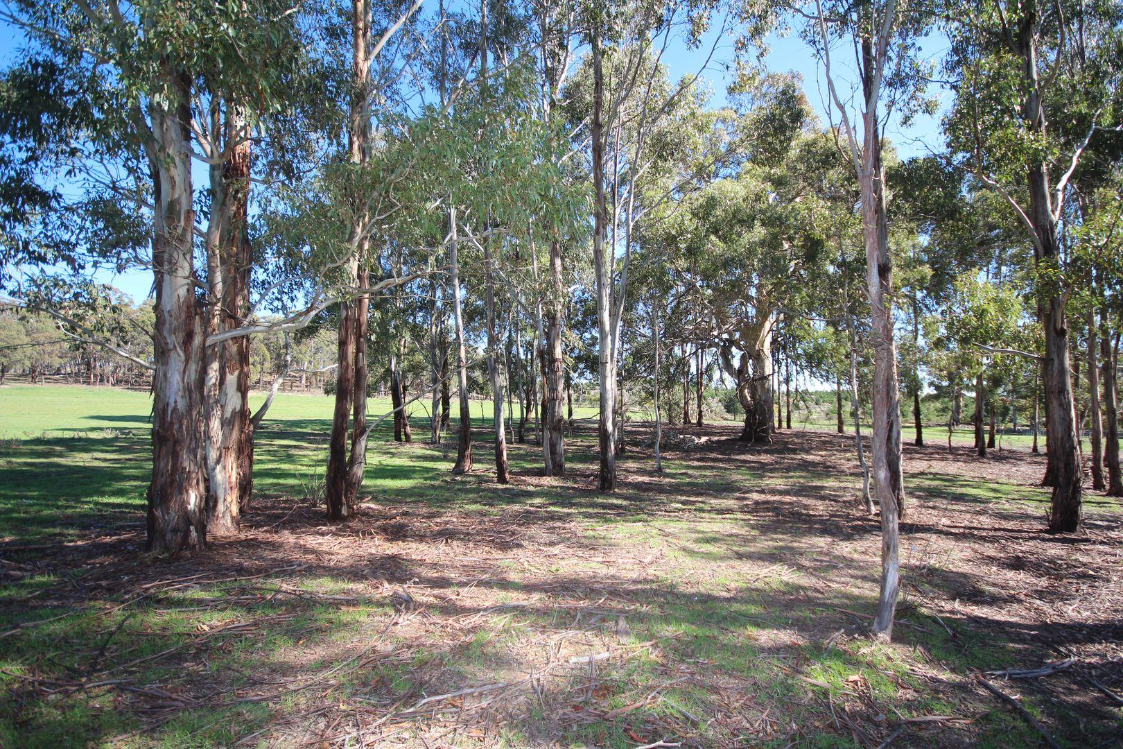 Lot 102, 304 Black Bullock Road, Oberon NSW 2787, Image 0