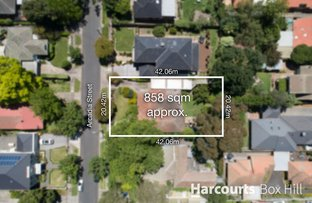 Picture of 7 Arcadia Street, Box Hill South VIC 3128