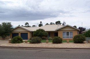 Picture of 59 Kookaburra Ave, Coleambally NSW 2707