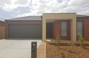 Picture of 25 Jacana, Armstrong Creek VIC 3217