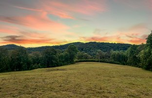 Picture of 256 Olney Arm Road, Laguna NSW 2325