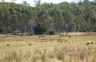 Picture of 493 Priestleys Lane, Birralee TAS 7303