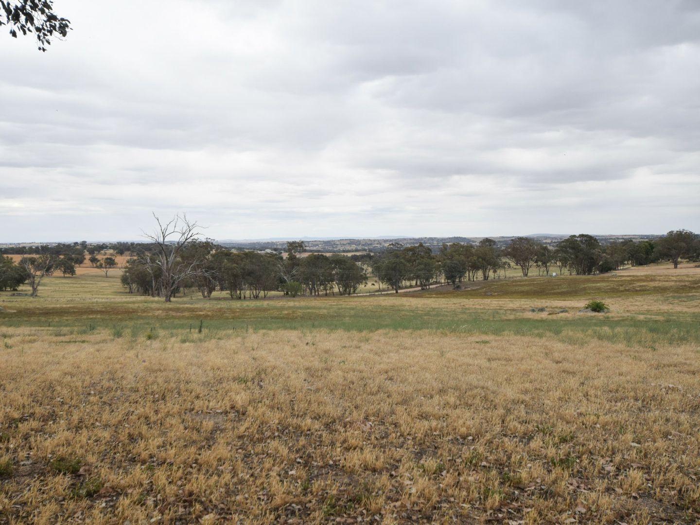 289 Wickham Lane, Young NSW 2594, Image 1