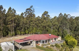 Picture of 651 Nicholls Rivulet Road, Oyster Cove TAS 7150